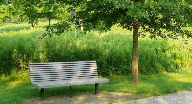 hcwg-bench.jpg